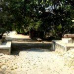 Bhavani Villa Danta Entrance
